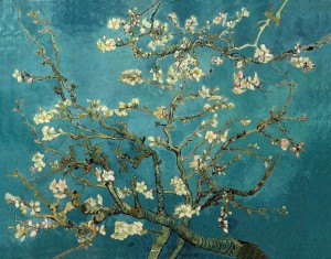 Almond Blossom, February 1890. Oil on canvas, 73.5 x 92.0 cm