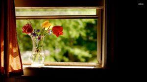 17100-tulips-in-the-window-1920x1080-flower-wallpaper-1366x768