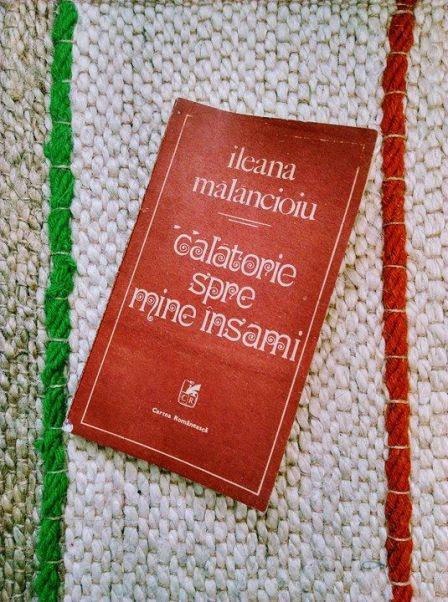 Calatorie spre mine insami_Ileana Malancioiu